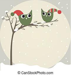 面白い, 単純である, 帽子, 2, イラスト, 漫画, フクロウ, ブランチ, クリスマスカード