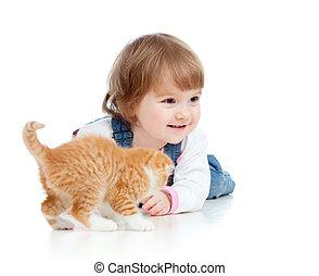 面白い, 子ネコ, スコットランド, 遊び, 子供