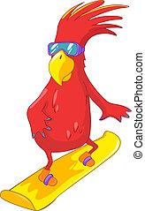 面白い, parrot., snowboarding