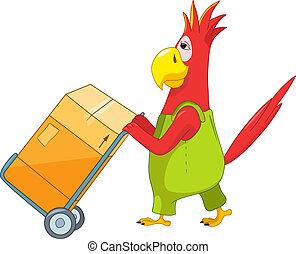 面白い, parrot., worker.