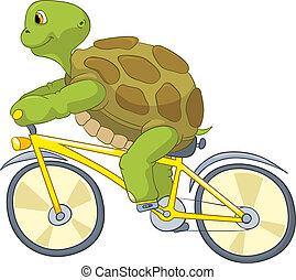 面白い, turtle., biker.