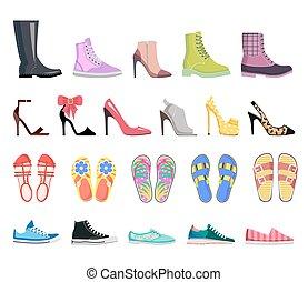 靴, 現代, コレクション, はき物, 女性, types.