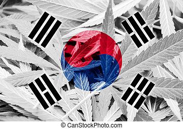 韓国, バックグラウンド。, マリファナの薬剤, legalization, 旗, policy., インド大麻, 南