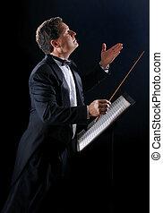 音楽, 指揮者