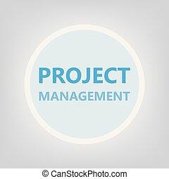 項目管理, 概念