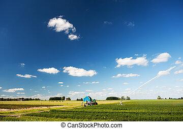 領域, 上水, 農業