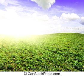 領域, 在下面, 綠色, 正午, 太陽