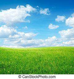 領域, 由于, 綠色的草, 以及藍色, 天空