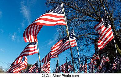 領域, 美國人, veterans., 旗, memoralizing