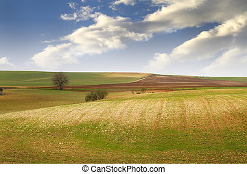 領域, 農業