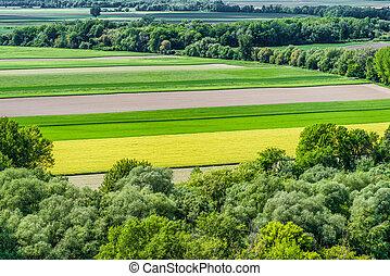 領域, 農業, 鮮艷