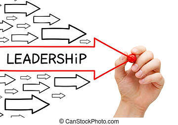 領導, 箭, 概念