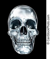 頭骨, 上に, イラスト, 金属, 黒, 人間, 3d