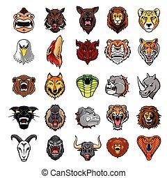 頭, 大きい, セット, コレクション, 動物