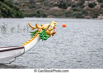 頭, 見る, dragon's, 水