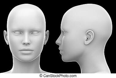 頭, -, 隔離された, イラスト, 黒人女性, ブランク, 前部, 白, 光景, 側, 3d