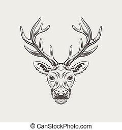 頭, 鹿, 隔離された, イラスト, ベクトル, 背景, 白