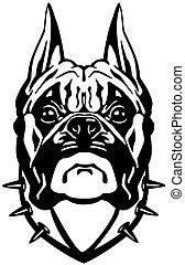 頭, 黒, ボクサー犬, 白