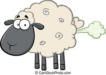 頭, 黒, fart, 雲, sheep