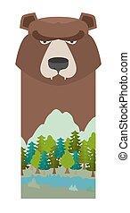 頭, bear., 灰熊