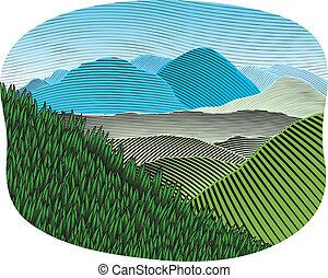 顏色, 山, 木刻, 風景