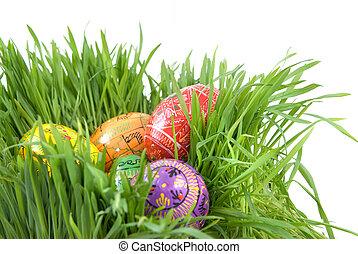 顏色, 復活節蛋, 在, 巢, 從, 綠色的草, 在懷特上