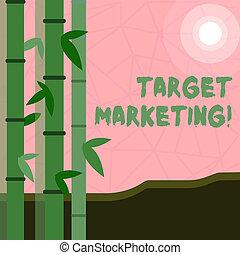 顧客, segmentation, marketing., ターゲット, ビジネス, 写真, 提示, 執筆, メモ, 聴衆, showcasing, 目標とすること, selection., 市場
