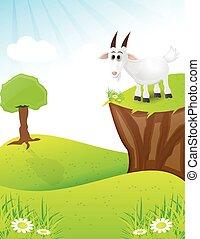 顶端, 小山, goat