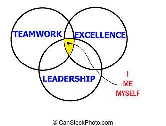 领导, 优秀, 配合
