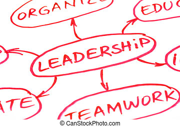 领导, 流程图, 红, 钢笔