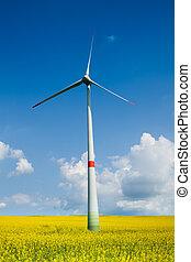 風タービン, 牧草地, 黄色