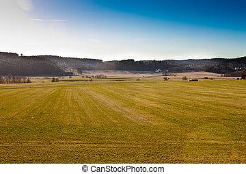 風景的圖, ......的, 農田, 在, 瑞典