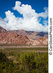風景, アルゼンチン, 光景, patagonia, rn7