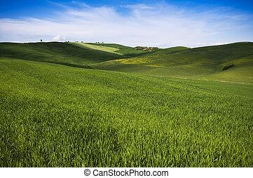 風景, トスカーナ