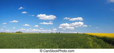 風景, パノラマ