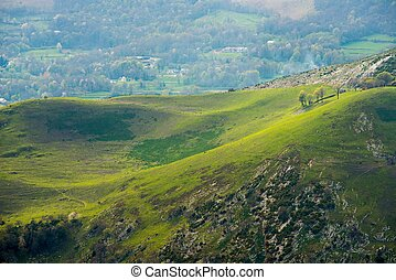 風景, 丘, 美しい