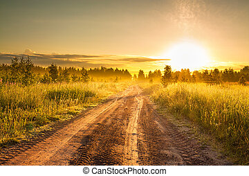 風景, 田園, 日の出, 夏, 道