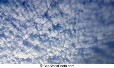 風景, ......的, the, 清楚的天空