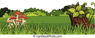 風景, 背景, 草, 綠色, 蘑菇
