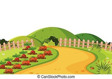 風景, 背景, 農田, 蔬菜