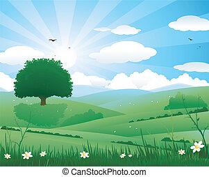 風景, 自然