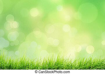 風景, 自然, 草
