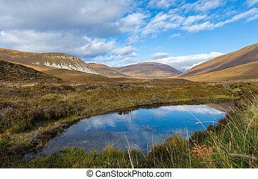 風景, orkney, スコットランド, 野生, hoy, 島