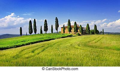 風景, tuscany., イタリア