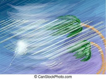 颶風, 棕櫚