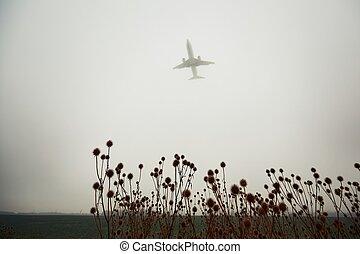 飛行機, 霧, 厚く