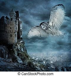 飛行, 貓頭鷹, 鳥