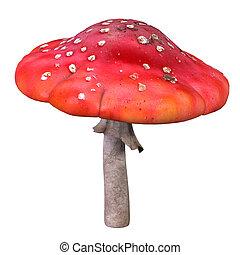 飛, 蘑菇, agaric
