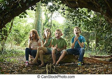 食べること, キャンプ, 森林地帯, ソーセージ, グループ, 子供
