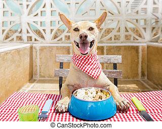 食べること, テーブル, ドッグフード, ボール